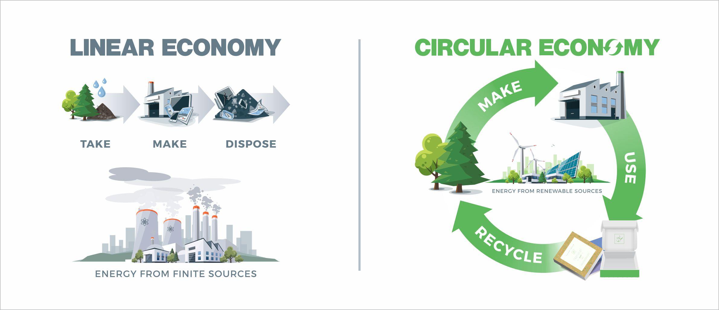 Eco-Packaging